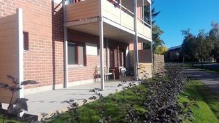 Aurinkoisella takapihalla suuri terassi