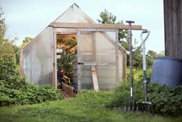 Kasvuhuone, jossa viljelty biologisesti