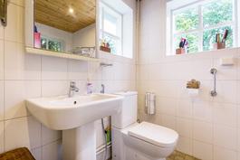 Kylpyhuone, jossa suihku ja pesukone