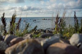 Näkymä merelle