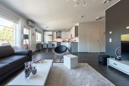 Avara yhtenäinen olohuone/keittiötila