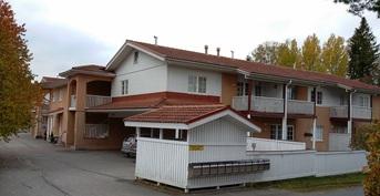Kuvassa näkyvä amppelikukka on myytävän asunnon takaterassilla.
