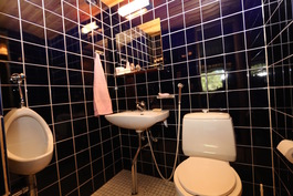 Alakerran WC, jossa lisäksi pisuaari