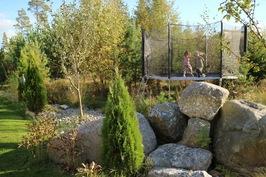 Monimuotoinen piha, jossa luonnon puita ja kiviä istutusten lisäksi.