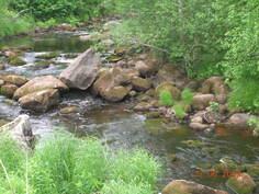 Joki kesähelteiden aikaan