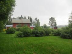 Puutarha ja rakennuksia