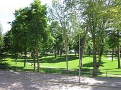 Kappelin puisto olohuoneesta nähtynä