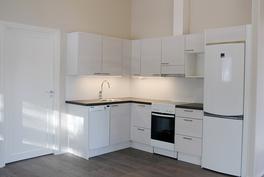 Puustelli-keittiö  (kuva valmistunut kohde)