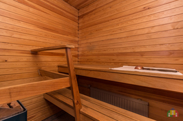 Siistikuntoinen oma sauna