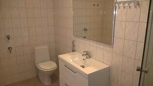 Kylpuhuonetta, uusi kaluste, hana, peili ja suihkukaappi