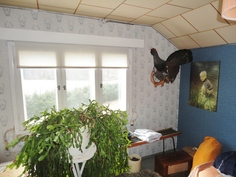 Yläkerran kamari