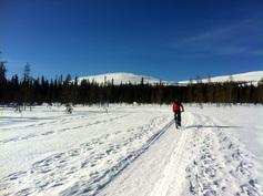 Pyöräilyreitistö kansallispuistoon.