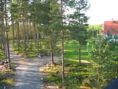 Piha-alue koostuu nurmialueesta ja metsästä. Pihasaunalle menee oma tie.