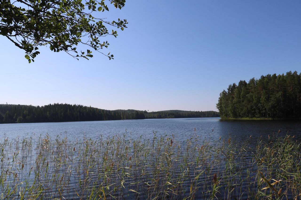 Polvijärvi