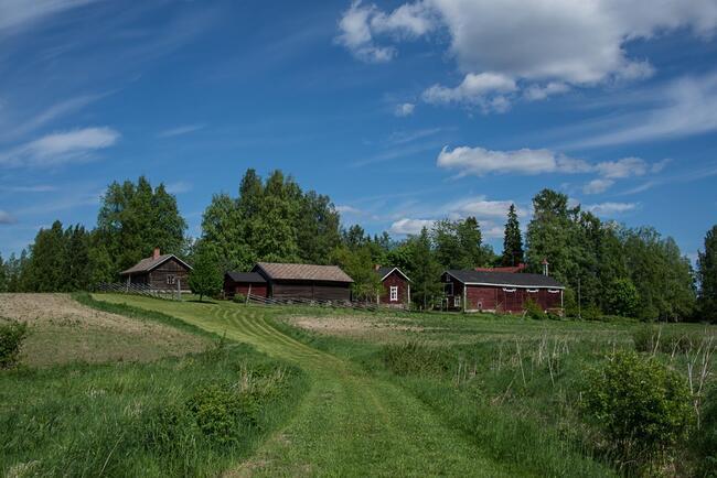 Seksideitti Oulu