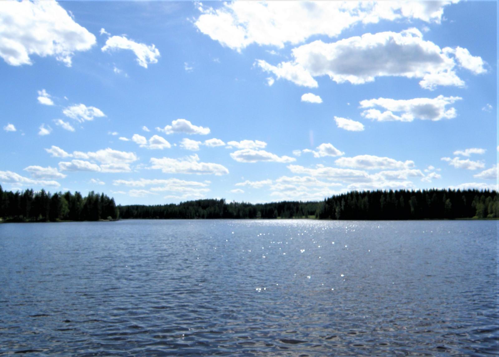 hieno järvimaisema edessä,Roikanvesi on puhdas
