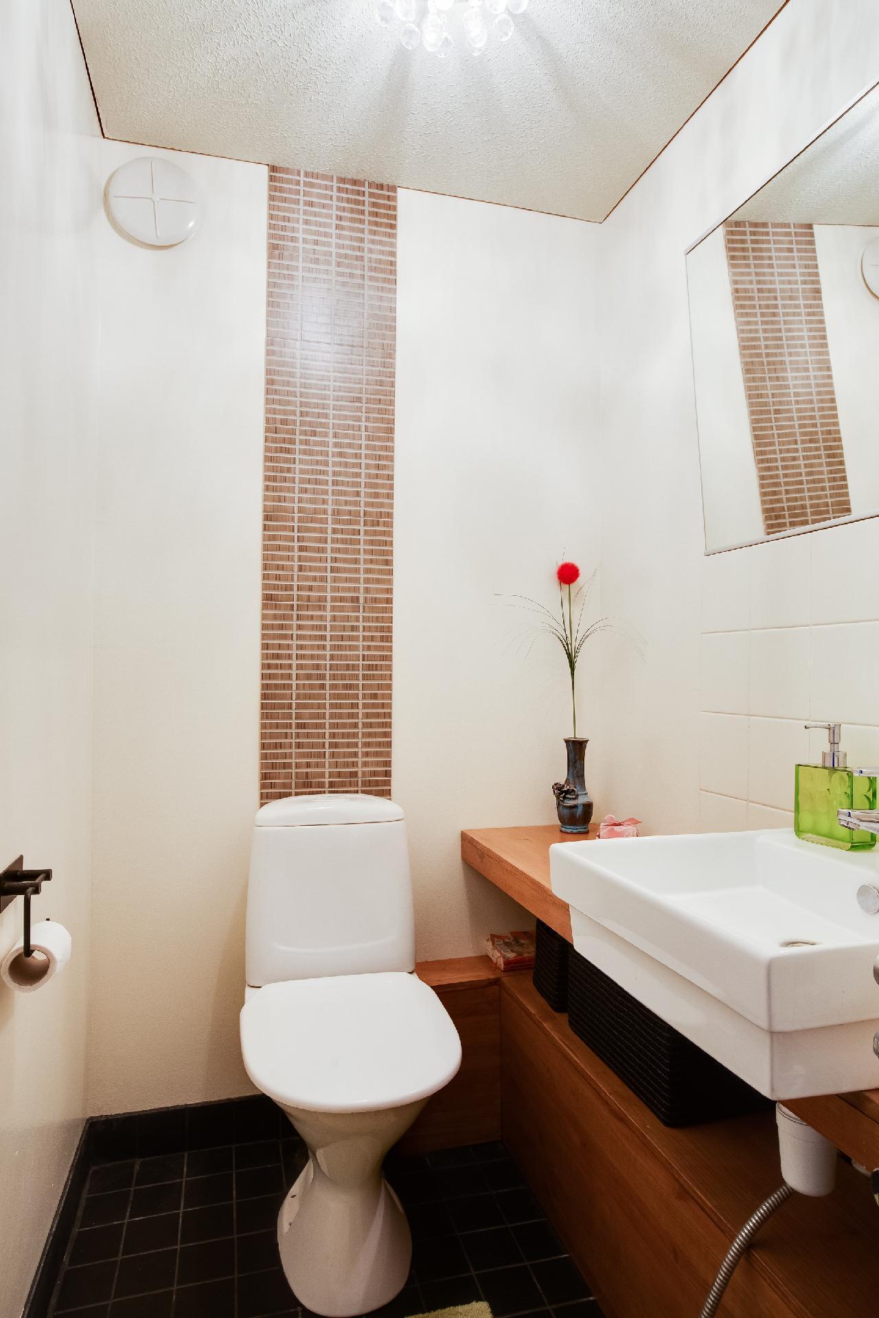 Alakerran remontoitu erillis wc
