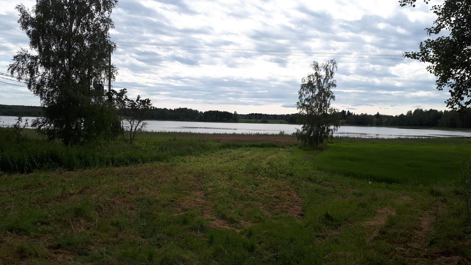 Näkymä alapihalta järvelle