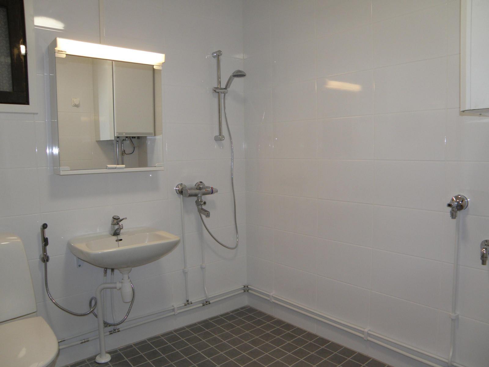 pesuhuone on laatoitettu ja vesieristetty joulukuussa 2016