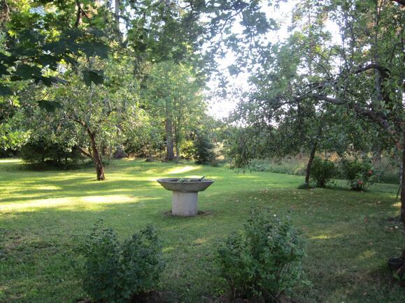 Puutarhaa, omenapuita...