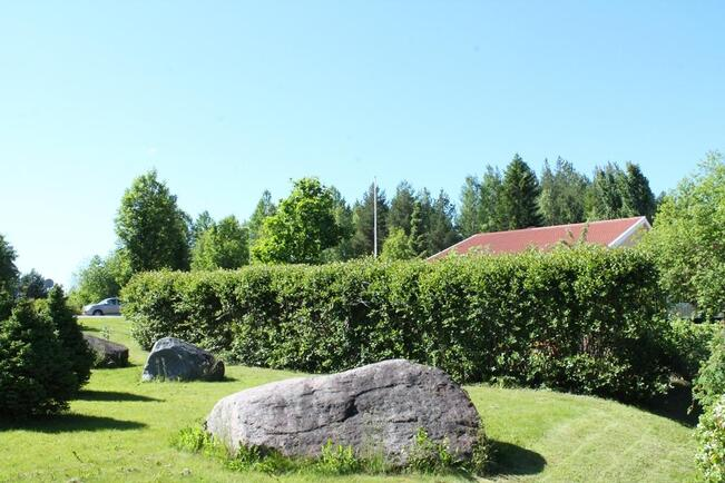 Talo pensasaidan suojassa