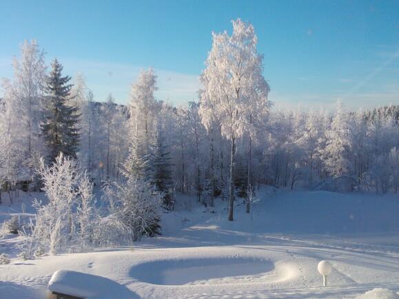 talvinen piha, allas odottaa kesää