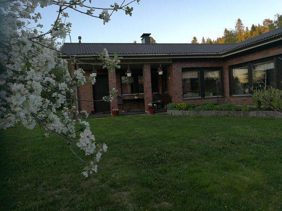 Sisäpihalla mm. omenapuu ja perennapenkki
