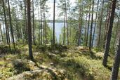 Myynti Saarenkylä