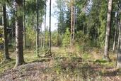 Myynti Hakamäki (3)