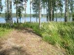 Myynti Vuokalanjärvi Kontio 9 -tila