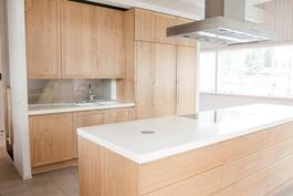 Tämä hyvin varusteltu keittiö on tyylikäs, käytännöllinen ja ajaton