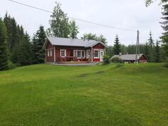 Pihassa on tilaa ja kaunista nurmikenttää. Oikealla pihasaunarakennus.