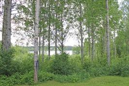 järvinäkymä Osmajärvelle