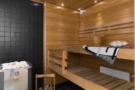 Tunnelmallinen puulämmitteinen sauna