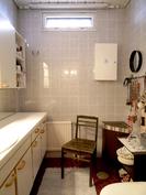 Tilava wc, jossa ollut myös suihku.