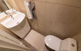 Erillinen pikku wc