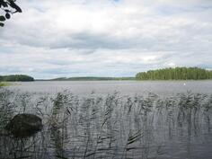 järvinäkymää