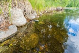 kirkas lähdepohjainen vesi