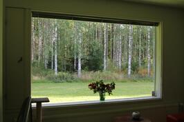 Asunto B ikkuna maisema