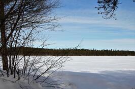 Myös talvimaisema pihasta on kaunis
