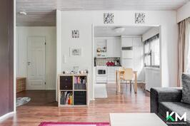 Keittiö ja olohuone ovat yhtä avonaista tilaa. Vasemmalla ovi kylpyhuoneeseen.