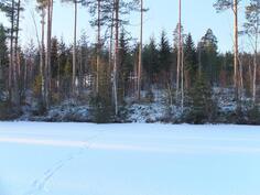 Talvista maisemaa järveltä rakennuspaikalle.