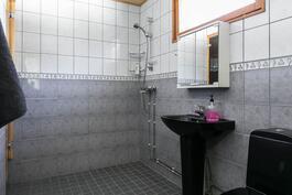 Kylpyhuoneessa myös wc-istuin!