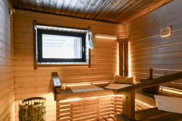 Vasen sauna
