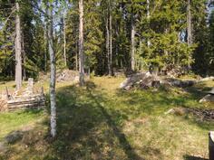 Mökin takaa alkaa metsäalue