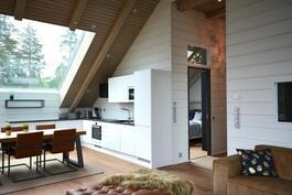 Olohuonetta ja keittiötä