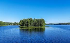 Näkymä järvelle kesällä