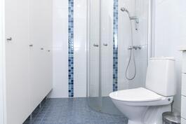 Yläkerran kylpyhuone/ Övre våningens badrum.