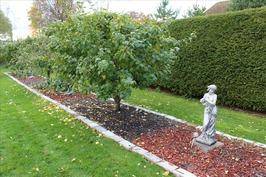 puutarhassa upeita yksityiskohtia, omenapuita