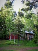 Piharakennus ja perinteinen sauna